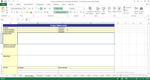 Project Mini charter Template Excel