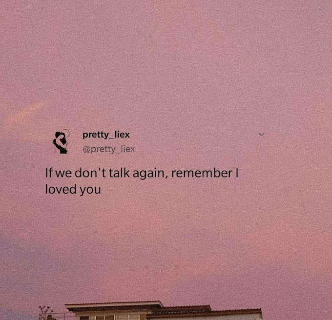 If we don't talk again, remember I loved you