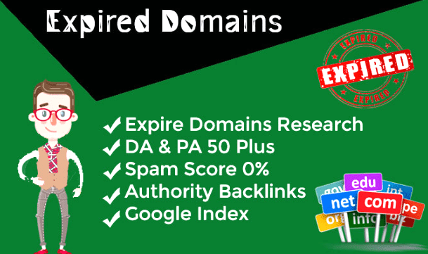 I Will Find PBN Expired Domains For You Within 24 Hours