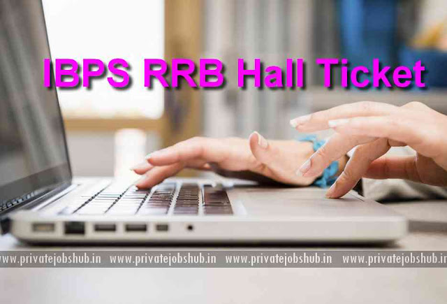 IBPS RRB Hall Ticket
