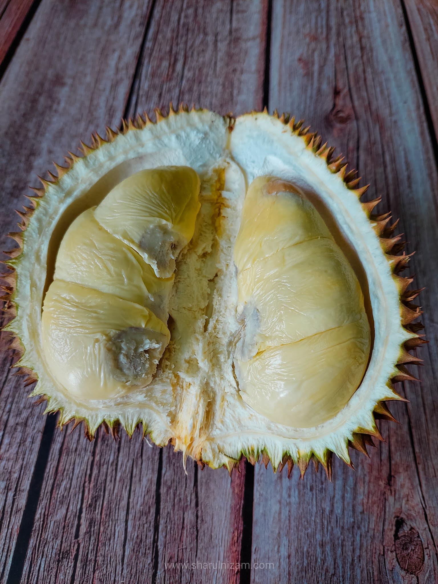 Menikmati Durian Musim PKP