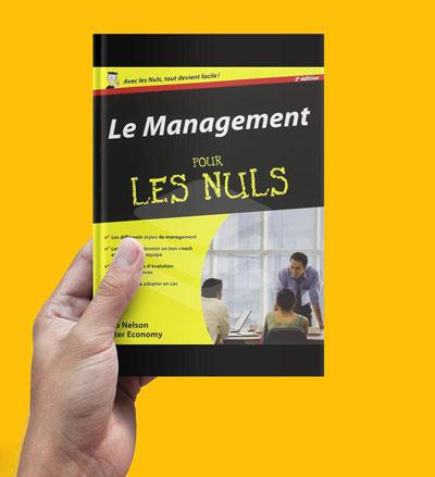 Le Management pour les Nuls PDF Free