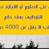 للحاصلين على الدبلوم أو الإجازة حملة جديدة للتوظيف بعقد دائم وراتب لا يقل عن 4000 درهم