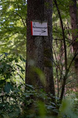 Drei-Täler-Tour und Stadtrundgang Bad Harzburg  Wandern im Harz  Eckerstausee - Radauwasserfall 11