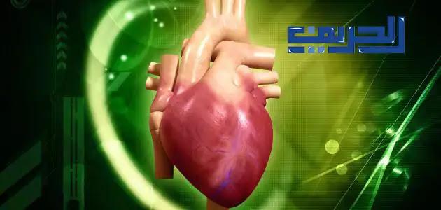 علاج روماتيزم القلب بالأعشاب