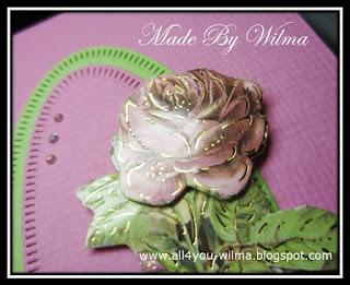 """Een close-up van de roos waarop de """"gouden"""" lijntjes te zien zijn. A close-up of the rose showing the """"golden"""" lines."""