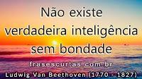 Frases de Beethoven (Ludwig Van Beethoven)
