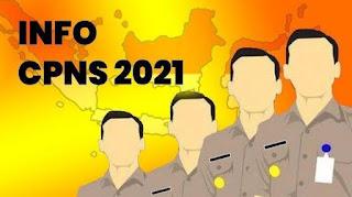 Pemerintah akan Buka Penerimaan 1 Juta CPNS di 2021, Benarkah?