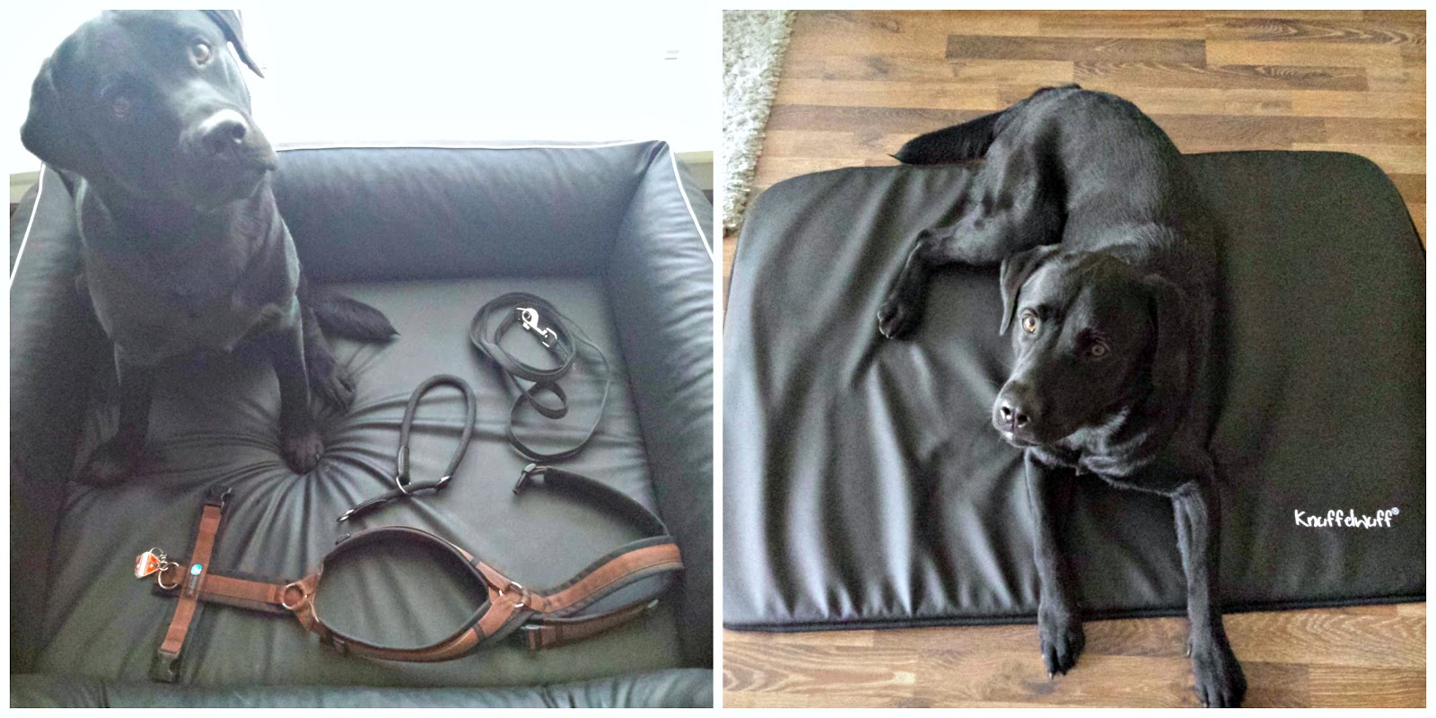 Hundekörbchen Kunstleder Loki