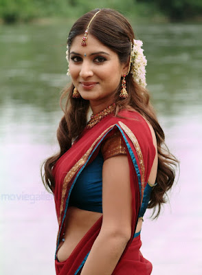 hot images in half saree