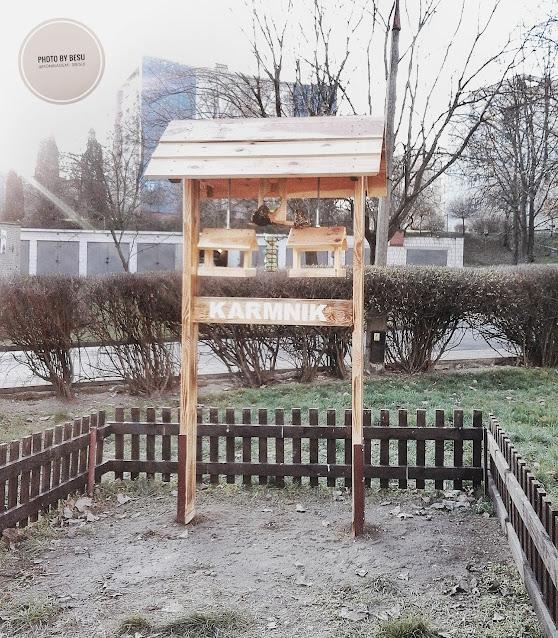 karmnik dla ptaków w Lublinie na osiedlu Kalinowszyzna