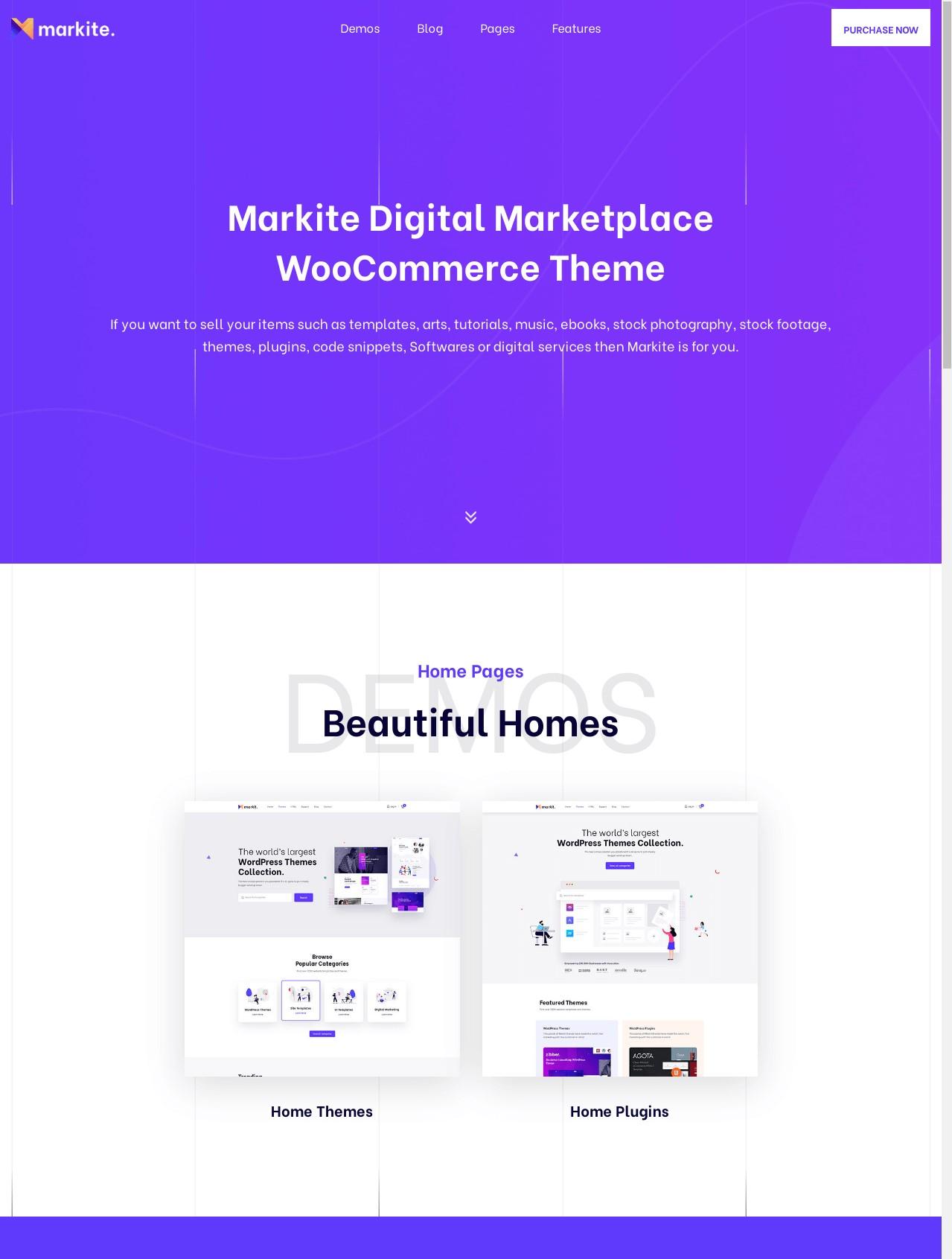 Markite  Digital Marketplace WordPress Theme