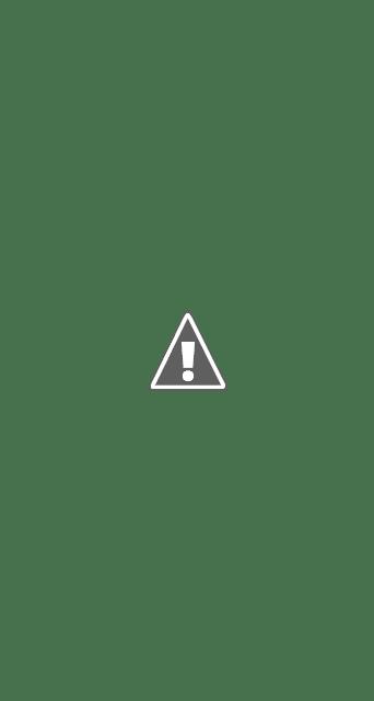 Jasa Lanskap Taman vertikal vertical garden Jakarta Bogor Depok Tangerang Bekasi, Jakarta Timur Selatan Barat Utara Pusat : taman dinding, green wall, vertical landscape, living wall, vertical garden