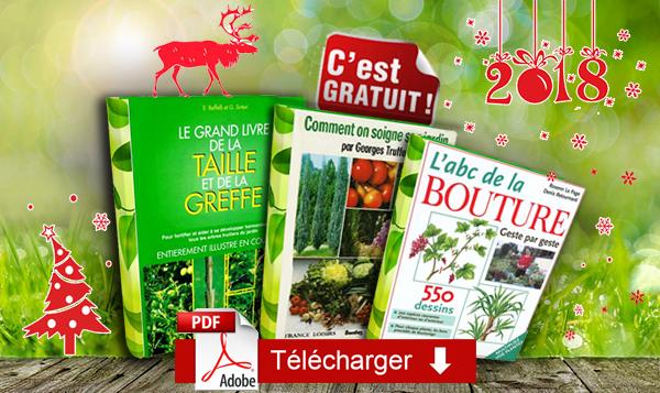 T l charger gratuitement trois ouvrages de jardinage for Les techniques de jardinage