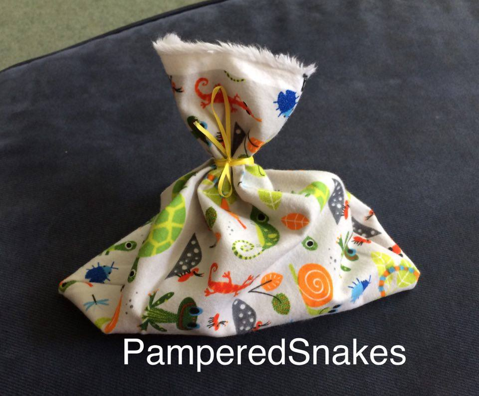 d1595f25095 Sarah s Bearded Dragon Rescue  A NEW Etsy Adventure