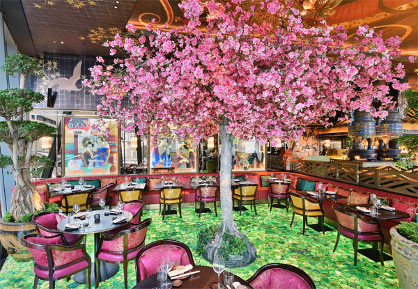 cherry blossom tree at The Ivy Asia St Pauls