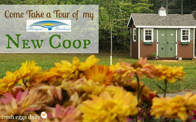 Come Tour My New Chicken Coop From Horizon Structures Fresh Eggs - Chicken co op with flowers