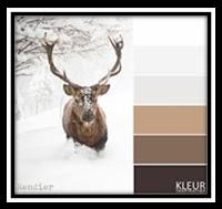 Kleurenpalet met rendier. Color palette with reindeer.
