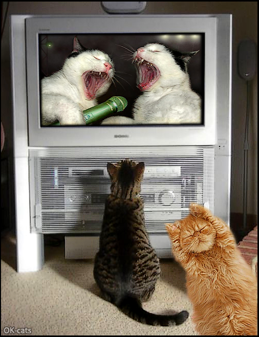 Photoshopped Cat GIF • Hard Rock concert too noisy, lower the sound, I can't take it anymore!