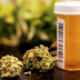 What to Consider While Finding Medical Marijuana Strains in Your Locality?