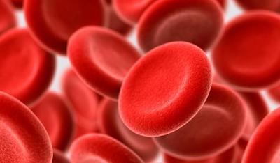 50 Fakta Unik Mengenai Darah