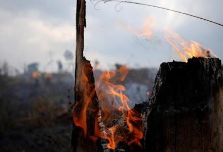Αμαζόνιος: Δεν σβήνουν οι φωτιές