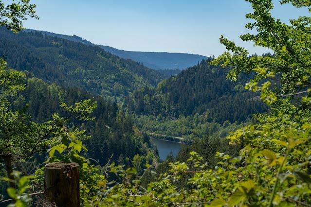Premiumwanderweg Murgleiter | Etappe 3 von Forbach nach Schönmünzach | Wandern nördlicher Schwarzwald 21