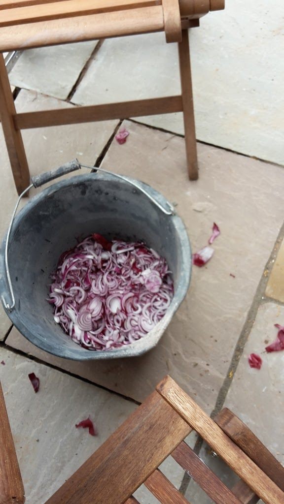 how to make caramelised red onion chutney