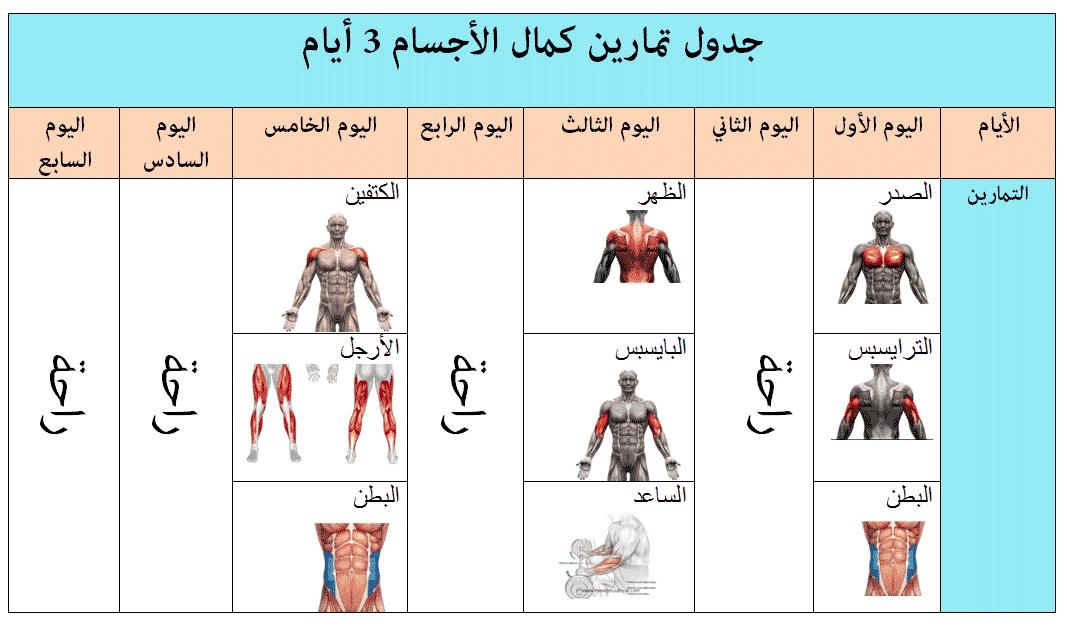 أفضل جدول تمارين كمال الأجسام 3 أيام 2020
