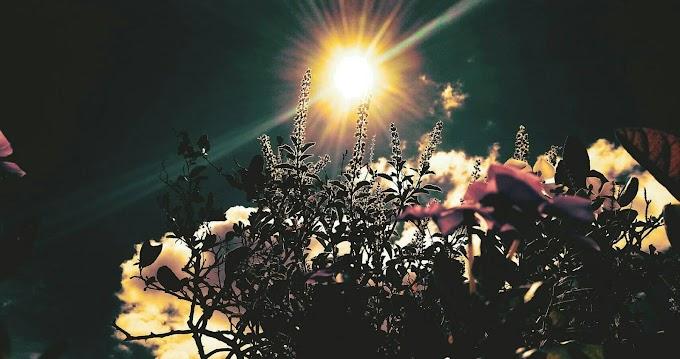 Rising Sun at Mymensingh, Bangladesh