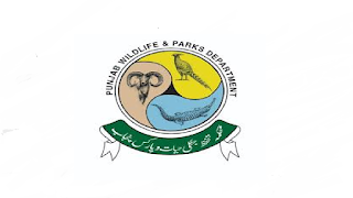 Department of Parks & Wildlife Protection Government of The Punjab Jobs in Pakistan Jobs 2021-2022