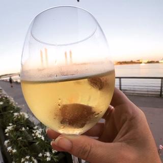 Certaines se sont aussi dévouées pour goûter le vin