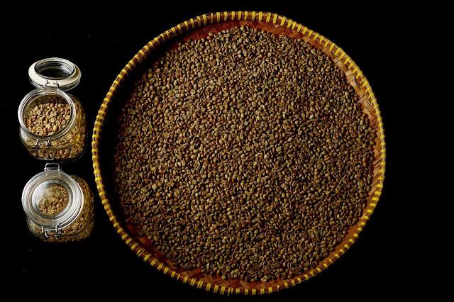biji kopi bengkulu yang berkualitas