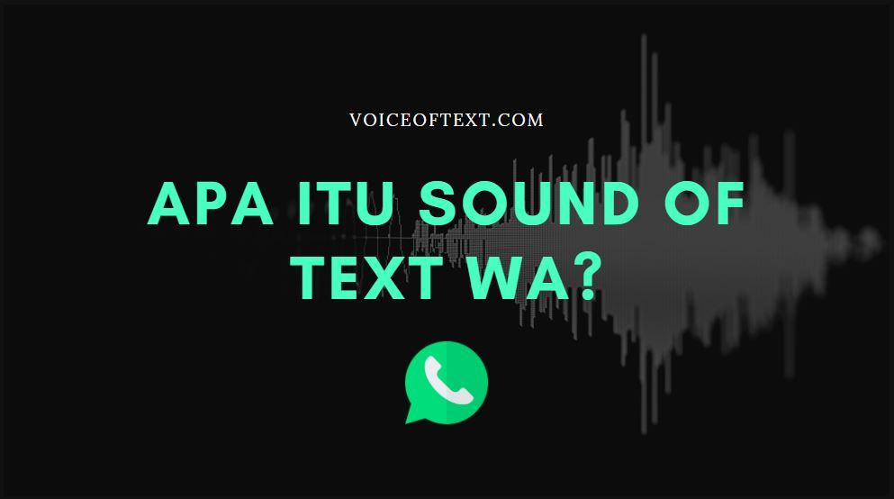 apa itu sound of text wa