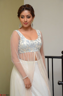 Anu Emmanuel in a Transparent White Choli Cream Ghagra Stunning Pics 117.JPG