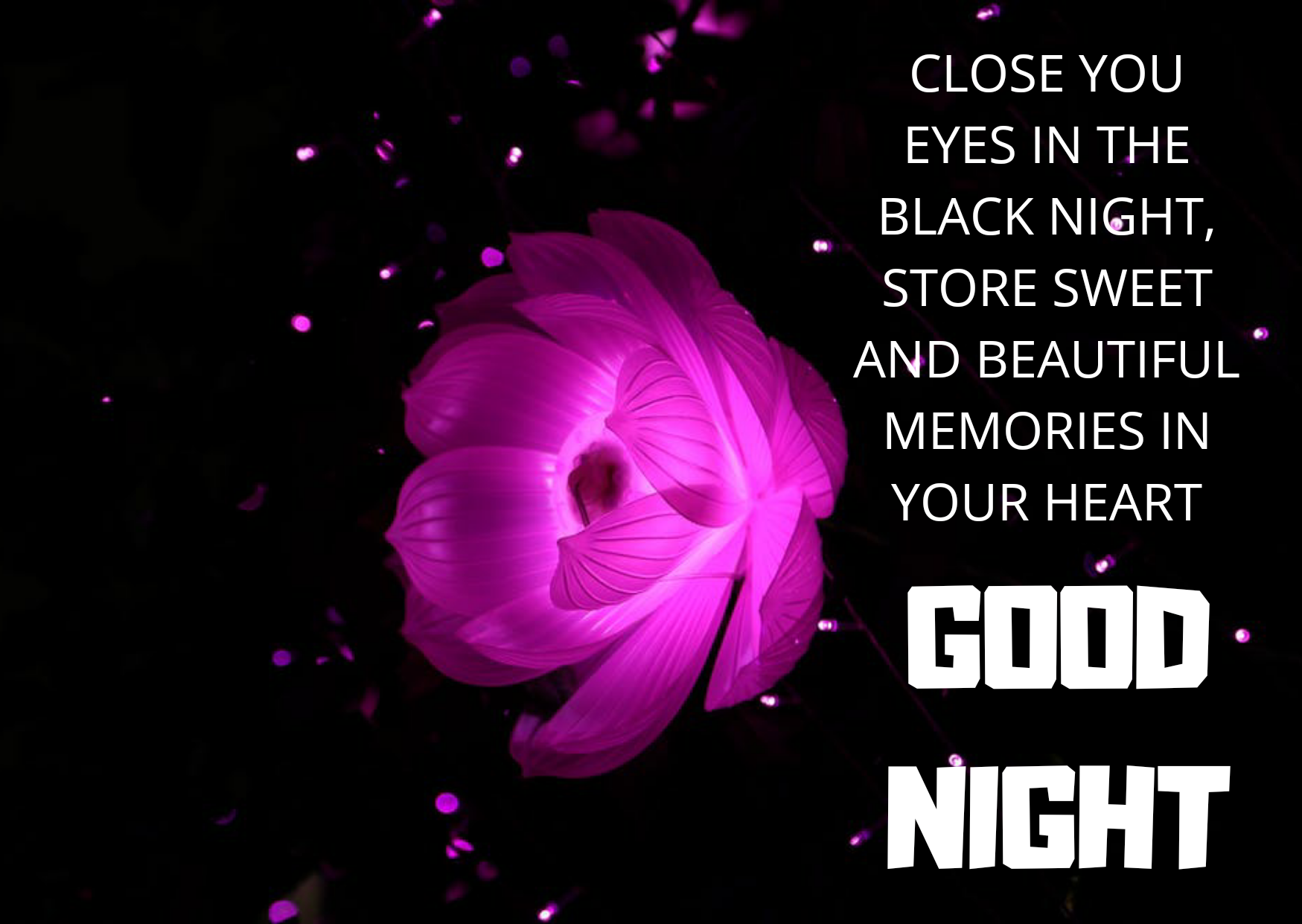 Good night status images wishes wallpaper