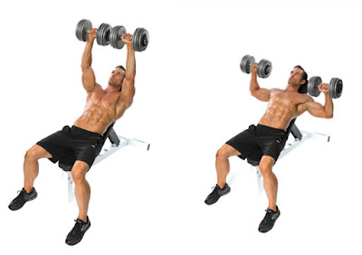 Dumbell Incline Bench Press / Upper Chest Workout