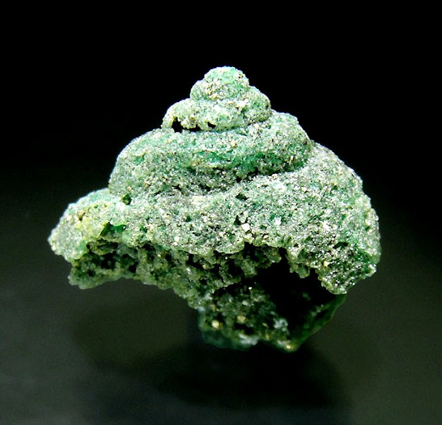 Rare Fossilized Gastropod Replaced by Precious Emerald