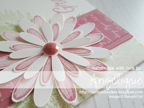 de Stempelkeuken Stampin'Up! producten koopt u bij de Stempelkeuken #stempelkeuken #stampinup #stampinupnl #stamping #stempelen #papercrafting #crafting #hobby #knutselen #cardmaking #cardmakersofinstagram #kaartenmaken #echtepostiszoveelleuker #postcrossing #slakkenpost #workshop #handmadecard #ribbon #daisy #madelief #daisylane #plukdedag #diy #handgemaakt #denhaag #westland #poeldijk #rijswijk #scheveningen #rococorose #oudroze #baby #bruiloft #groetjes