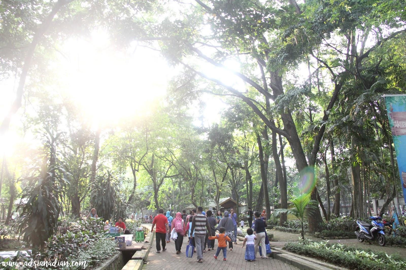 Kebun Binatang Ragunan 2016