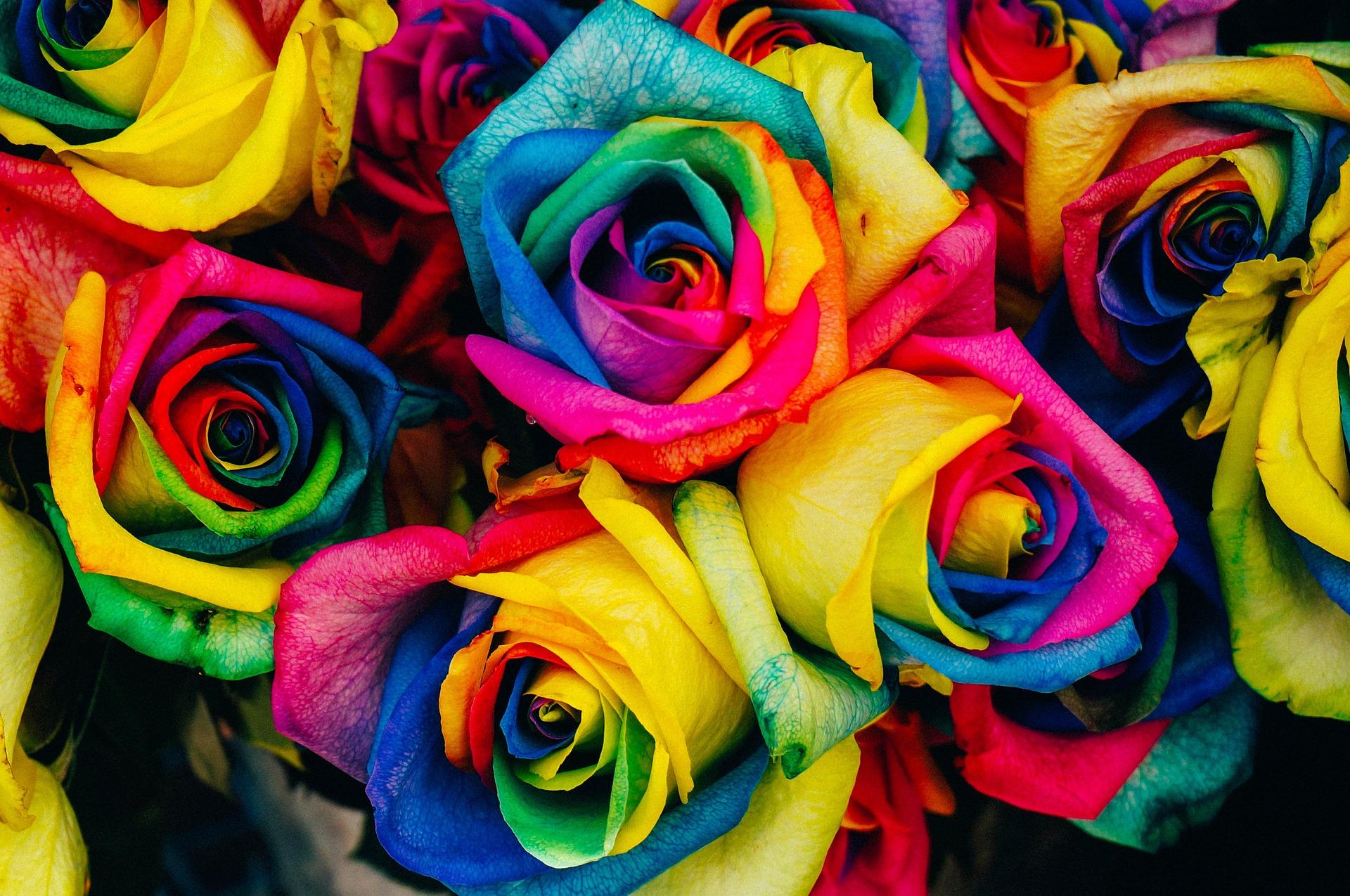 Choosing Roses