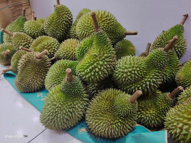 Ini Betul-Betul Hantu Durian!