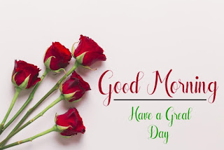 Good Morning Royal Images Download for Whatsapp Facebook51