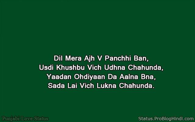 funny love status punjabi