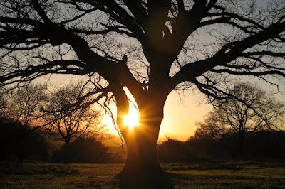 relación con Dios, nuestro Creador, el dador de la vida