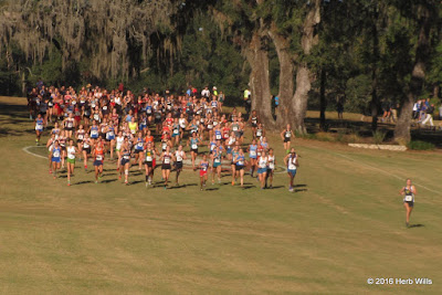 FHSAA 1A Girls' Cross Country Championship