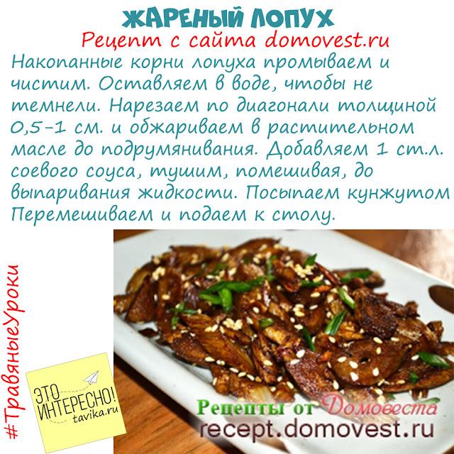 рецепты блюд из лопуха