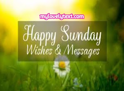 Happy Sunday wishes image