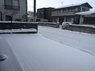 今年初めて、除雪車が来ました。
