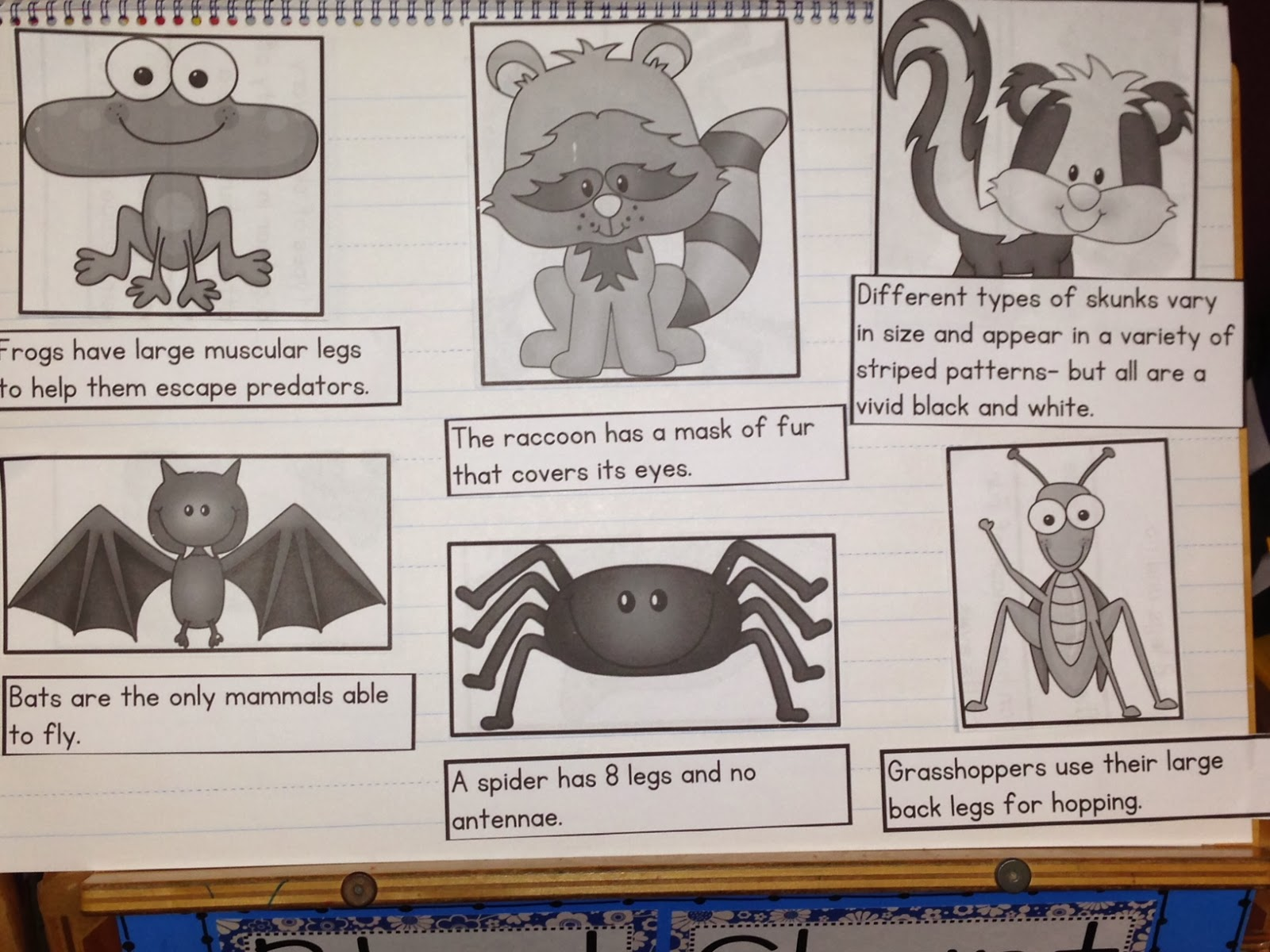 Chalk Talk A Kindergarten Blog Writing Captions